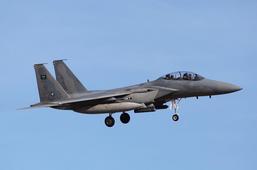 SAU F15S